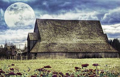 Photograph - Worm Moon by Jean OKeeffe Macro Abundance Art