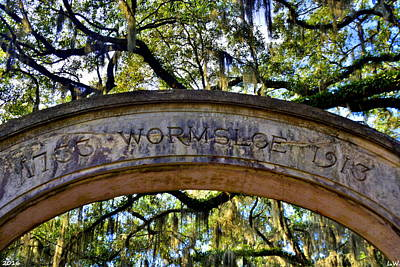 Photograph - Wormsloe Plantation Isle Of Hope Ga 2 by Lisa Wooten