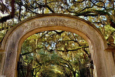 Photograph - Wormsloe Plantation Isle Of Hope Ga by Lisa Wooten