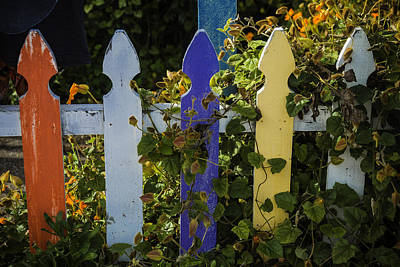 Worn Colored Fence Art Print by Garry Gay