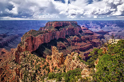Photograph - Wotans Throne Grand Canyon by Carolyn Derstine