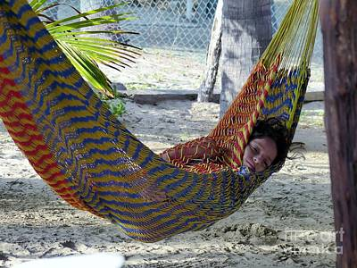 Photograph - Wrapped In The Hammock by Rosanne Licciardi