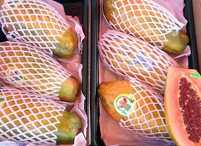 Photograph - Wrapped Papayas by Mudiama Kammoh
