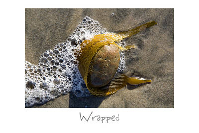 Photograph - Wrapped by Peter Tellone