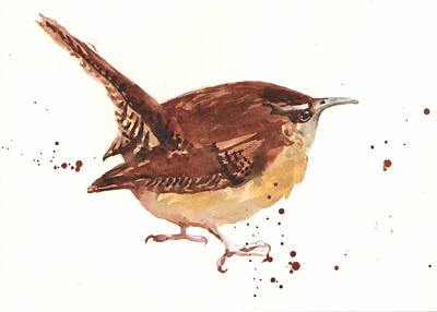 Wrens Painting - Wren - Cheeky Wren by Alison Fennell