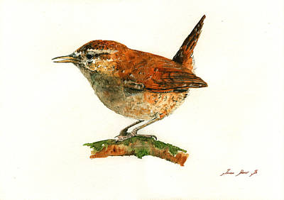 Decals Painting - Wren Bird Art Painting by Juan  Bosco