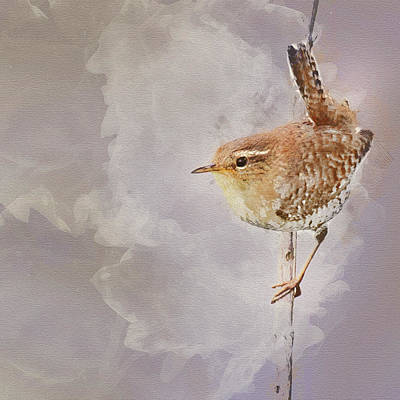 Wren Sitting On A Branch Art Print by Art By Jeronimo