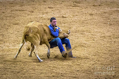 Photograph - Wrestle That Steer Till You Are Blue In The Face by Rene Triay Photography