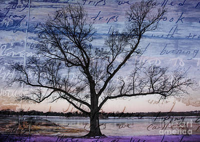 Mixed Media - Written On The Wind by Terry Rowe