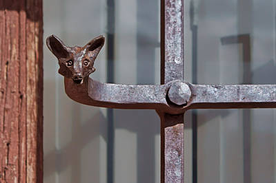 Ironworkers Photograph - Wrought Iron Fox by Nikolyn McDonald