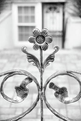 Photograph - Wrought Iron Daisy by Cate Franklyn