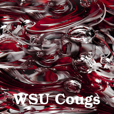 Photograph - Wsu Cougs by David Patterson