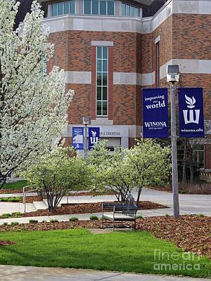 Photograph - Wsu Library In Spring by Kari Yearous