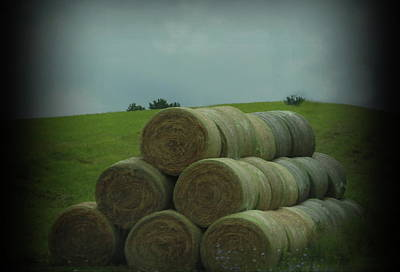 Mannequin Dresses Rights Managed Images - WV Hay Bales 6 Royalty-Free Image by Cathy Lindsey