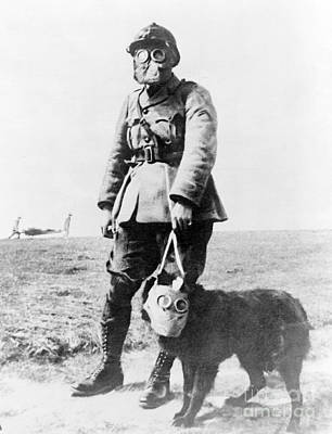 Infantryman Photograph - Wwi, French Soldier And Dog Wearing Gas by Science Source