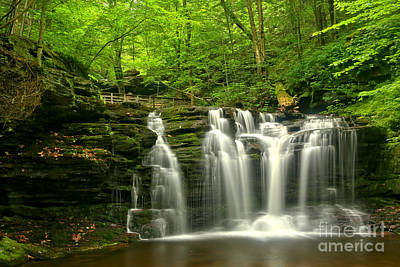 Photograph - Wyandot Falls In The Forest by Adam Jewell