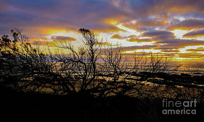 Photograph - Wye River Sunrise by Lexa Harpell