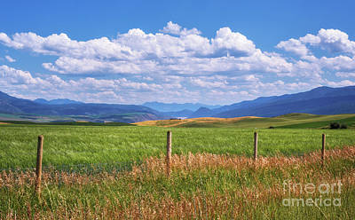 Photograph - Wyoming Landscape by Sharon Seaward