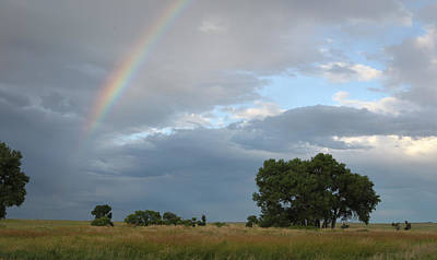 Photograph - Wyoming Rainbow by Diane Bohna