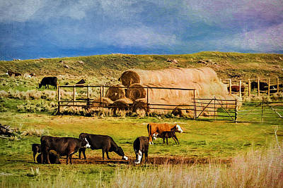 Photograph - Snowy Range Ranch by Maria Coulson