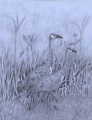 Wyoming Sandhill Cranes Original