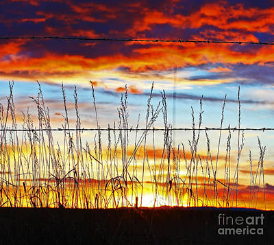 Fire Photograph - Wyoming Sunset by Wesley Hahn