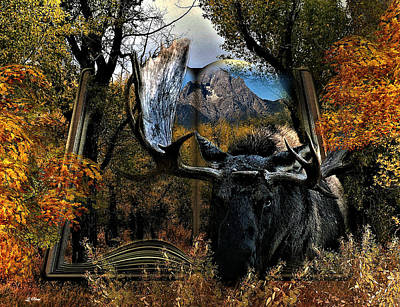 Teton Mixed Media -  Wildlife Magazine by G Berry