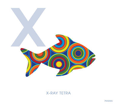 X Ray Digital Art - X Is For X-ray Tetra by Ron Magnes
