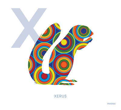 Squirrel Digital Art - X Is For Xerus by Ron Magnes
