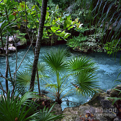 Xcaret Art Print by Ray Manning