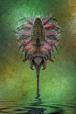 Digital Art - Xenomorphic Growth by WB Johnston
