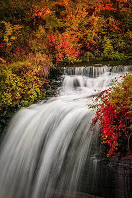 Fall At Minnehaha Falls Art Print