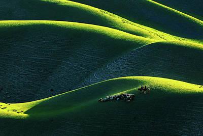 Photograph - Xin Jiang 01 by Junzhu Cao