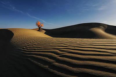Photograph - Xin Jiang 03 by Junzhu Cao