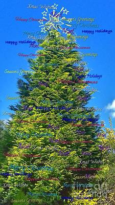 Photograph - Xmas Greetings Tree  by Joan-Violet Stretch