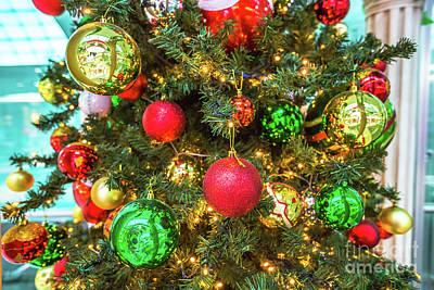 Photograph - Xmas Tree Close Up by Benny Marty
