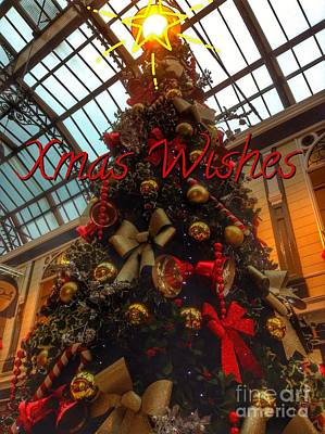 Photograph - Xmas Tree Greetings by Joan-Violet Stretch
