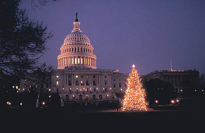 Photograph - Xmas Tree In Washington Dc by Carl Purcell