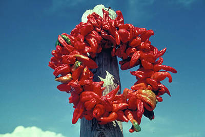 Photograph - Xmas Wreath Of Red Peppers by Carl Purcell
