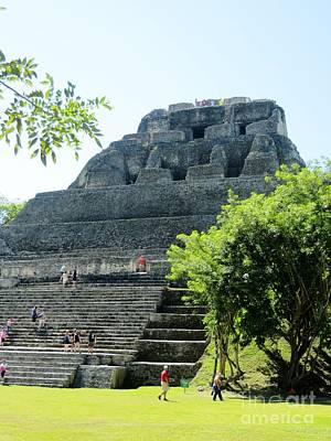 Photograph - Xunantunich  Belize  C A. by Tim Townsend