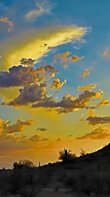 Photograph - Y Cactus Sunset 10 by Judy Kennedy