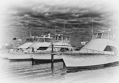 Photograph - Yachts In The Marina by Brian Kinney