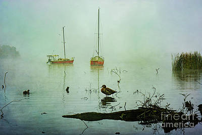 Photograph - Yachts On A Misty Sunrise by Stuart Row