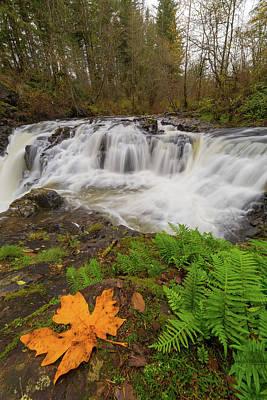 Photograph - Yacolt Creek Falls In Fall Season by David Gn