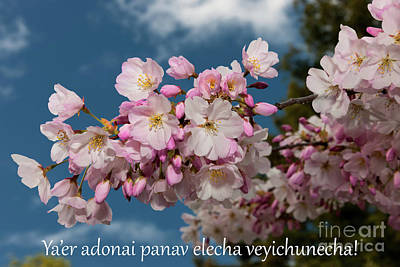 Photograph - Yaer Adonai Panav Elecha Veyichunecha by Glenn Franco Simmons