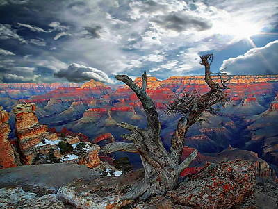 Photograph - Yaki Point Grand Canyon by Anthony Dezenzio