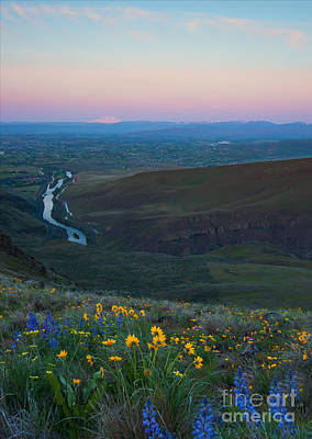 Yakima River Dawn Art Print by Mike Dawson