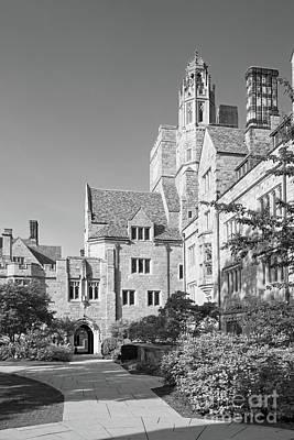 Photograph - Yale University Saybrook College by University Icons