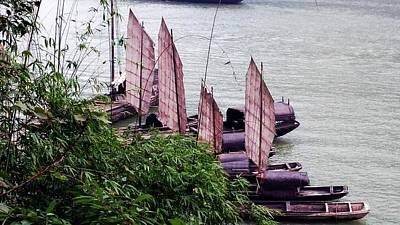 Photograph - Yangtze Boats by Vicky Tarcau
