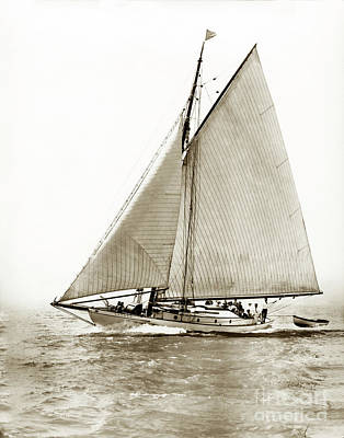 Photograph -  Yankee A   52-footer Wooden Schooner She Was  At William F. Stone's Of S.f. 1906 by California Views Mr Pat Hathaway Archives